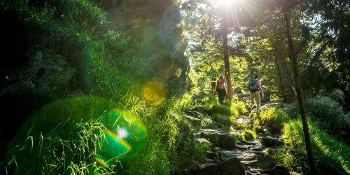 Goldsteig: Zehn Jahre Qualitätswanderweg