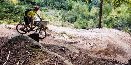 Dem Nervenkitzel auf der Spur: Mountainbiken