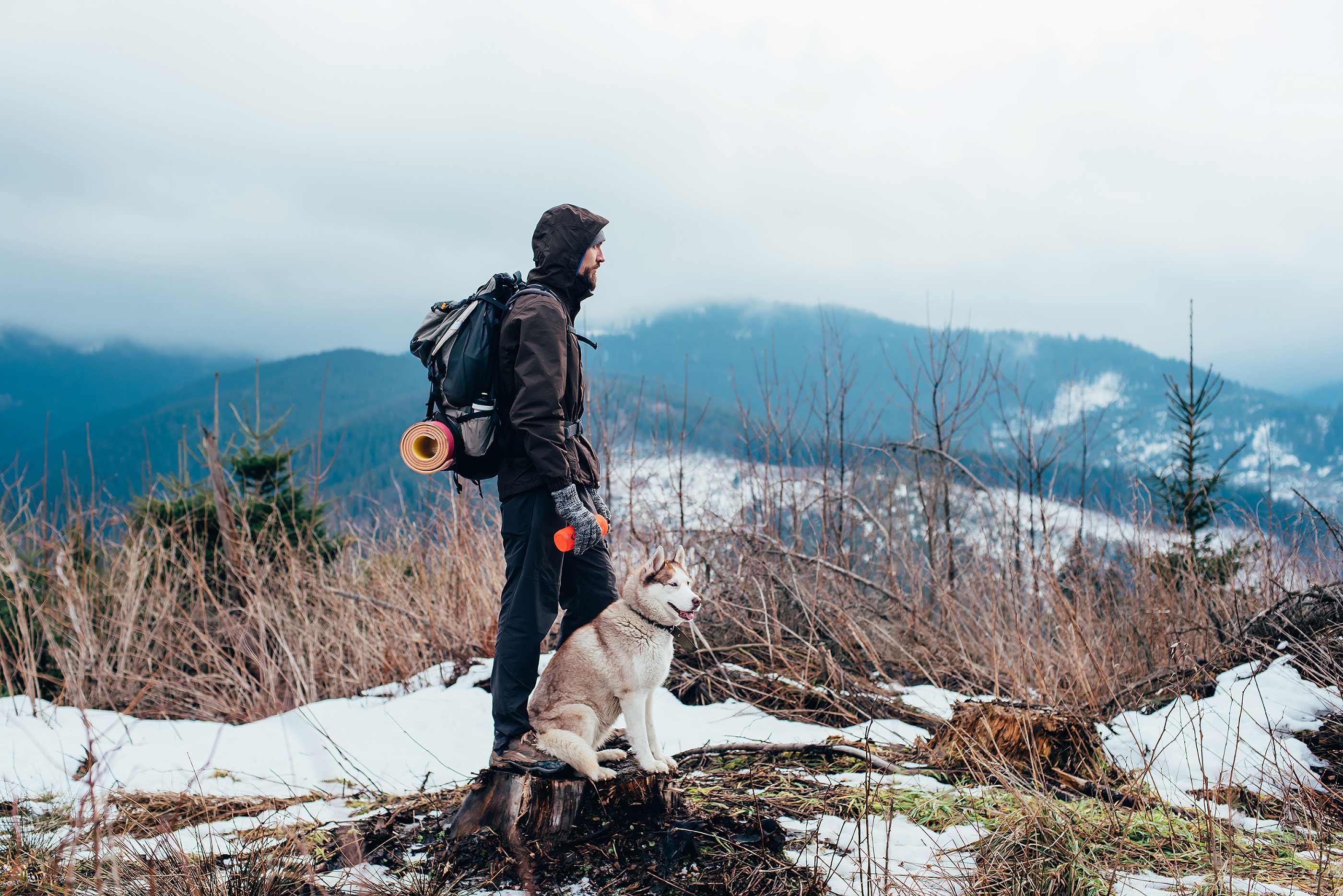 Auf vier Pfoten durch das Schneetreiben | COOPER