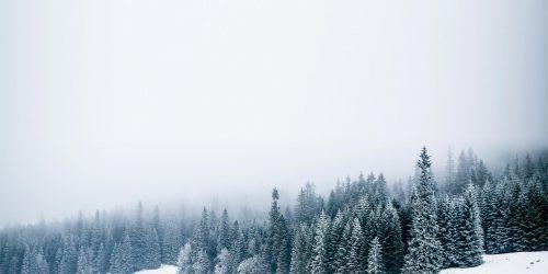 Barfuss durch den Schnee
